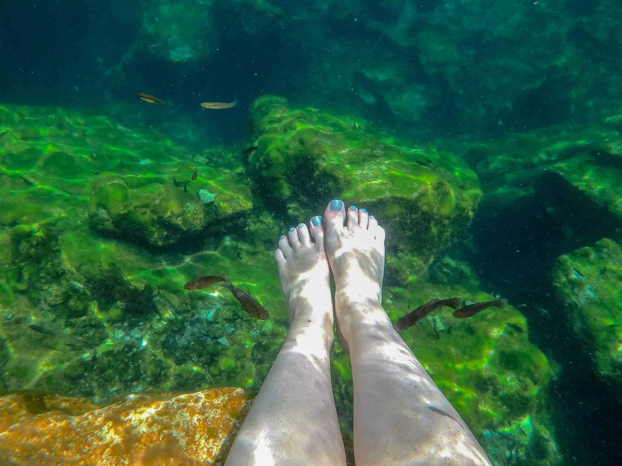 Cenote Eden Fish Spa