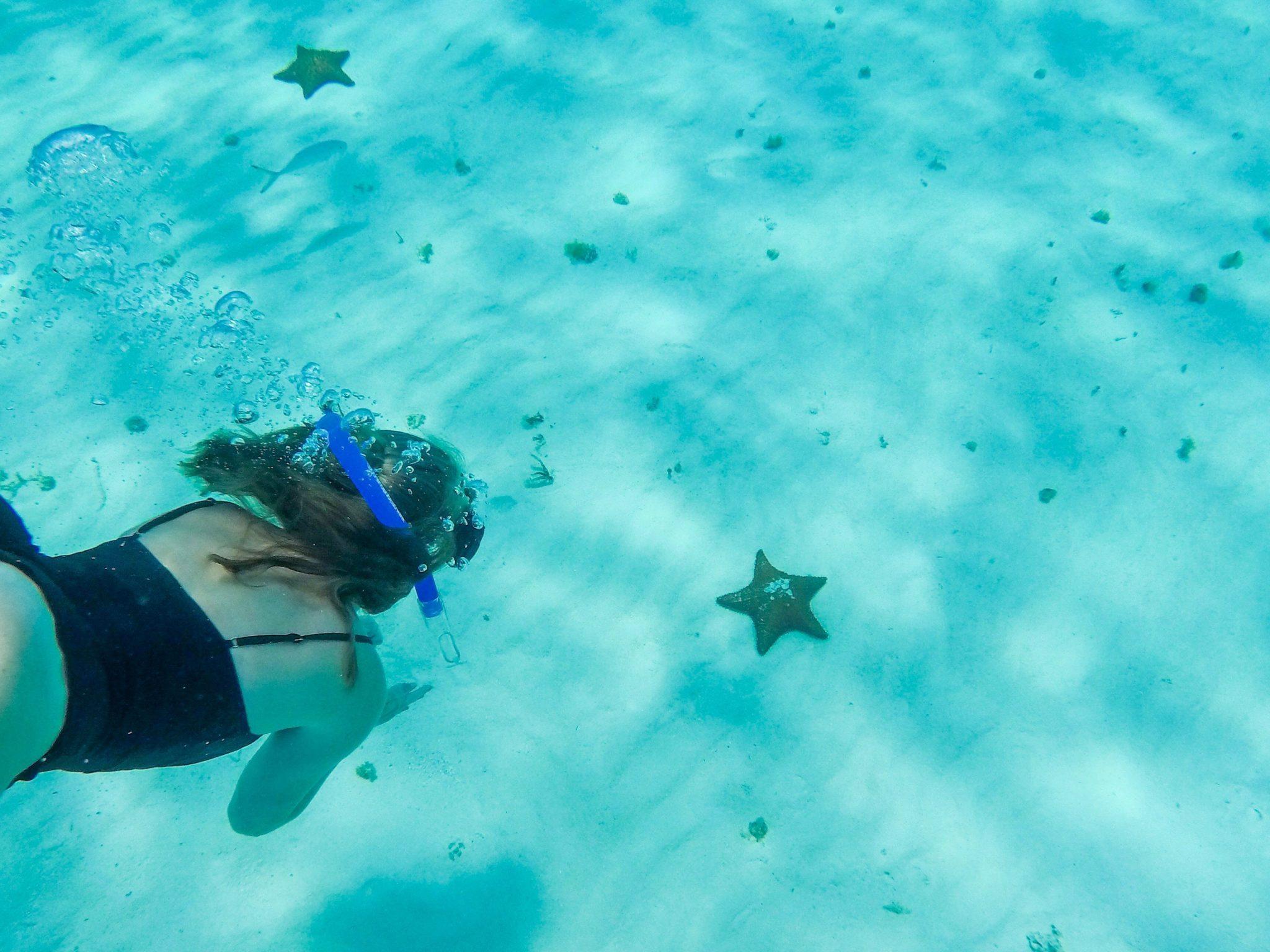 El Cielo Cozumel Starfish