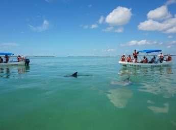 Sian Ka'an Tour from Playa del Carmen