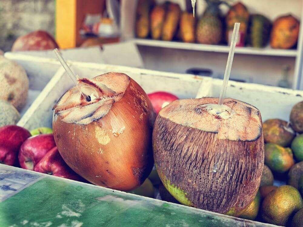 Coconuts Mexico